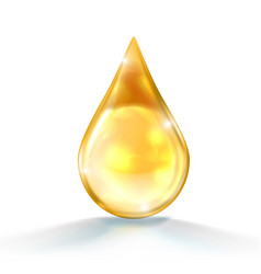 Gold oil or honey drop isolated on white back vector