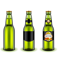 Green beer bottle design 3d realistic vector