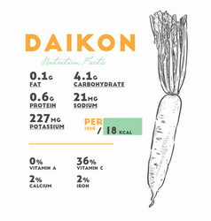 Nutrition facts daikon hand draw sketch vector