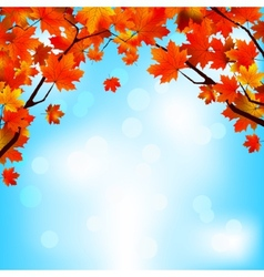 Red and yellow leaves against bright sky EPS 8 vector