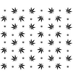 seamless marijuana cannabis pattern image vector image