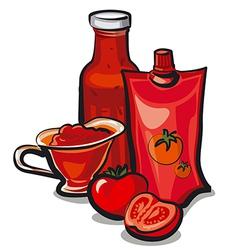 Tomato sauces vector