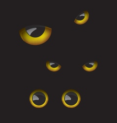 Owl eyes in the dark vector image