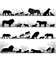 lions family silhouette vector image vector image