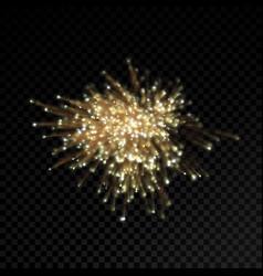 Abstract firework glitter or optical fiber light vector