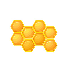 bright cartoon icon of honeycombs natural farm vector image