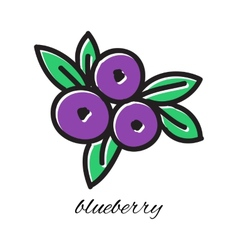 Doodle blueberry Hand-drawn object isolated on vector image