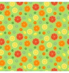 Fruits orange seamless patterns vector image