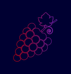grapes sign line icon with vector image
