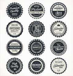 quality retro vintage badges collection vector image