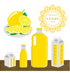 the theme lemon vector image