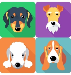 set dogs icon flat design vector image vector image