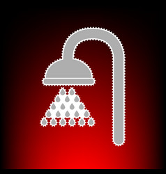 shower style on vector image