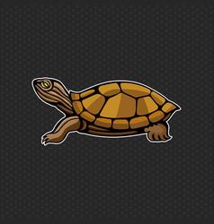 turtle logo design template turtle head icon vector image