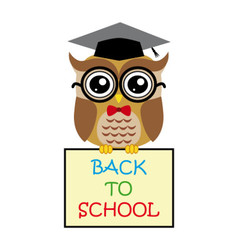 Cute owl teacher on white background cartoon with vector