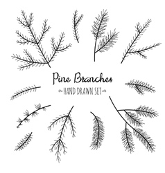 Hand drawn pine branches set vector