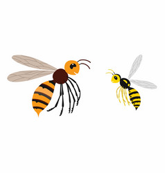 Hornet and wasp differences vector