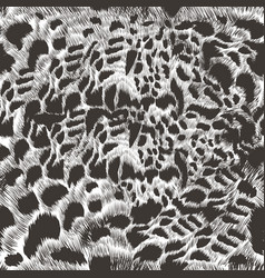 monochromic leopard hair pattern in high detailed vector image