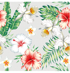 plumeria hibiscus flowers green leaves seamless vector image