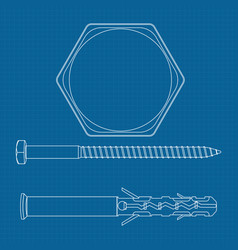 screw with plastic dowel and screw head vector image vector image