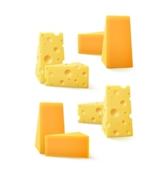 Set of pieces cheddar swiss cheese on background vector