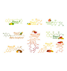 vitamin complex with food b1 b6 b9 b12 k a e c vector image