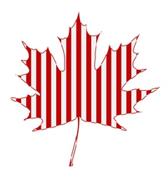 Striped Maple Leaf vector image vector image