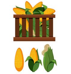 A crate of corn vector