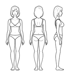 a female figure vector image