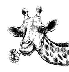 cute giraffe with a flower sticker on wall vector image