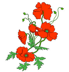 Decorative red poppies vector