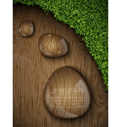 Dew drops on a wooden background vector