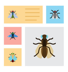 Flat icon housefly set of gnat fly mosquito and vector