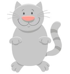 Happy gray cat cartoon animal character vector