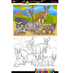 marsupials animals cartoon coloring book vector image