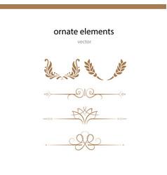 ornate elements vector image