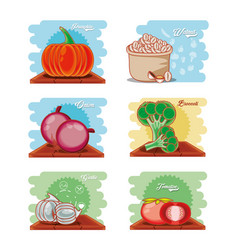 set vegetables healthy food vector image