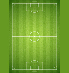 soccer green field vector image