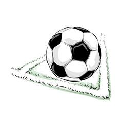 soccer ball field vector image