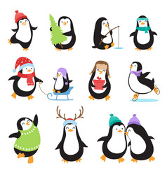 cute cartoon penguins winter holidays vector image