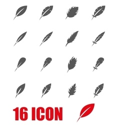 grey feather icon set vector image