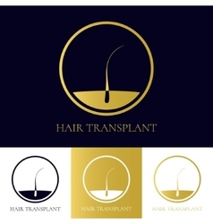 Hair transplant icon vector