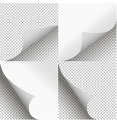 pages curl set stylish design vector image