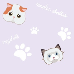 seamless cute cat and paw purple pattern vector image vector image