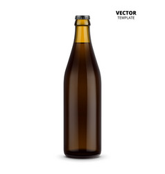 beer bottle glass mockup isolated vector image