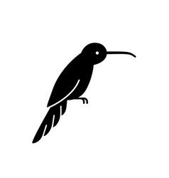 black humming bird silhouette vector image
