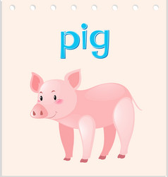 Flashcard with word and picture of pig vector