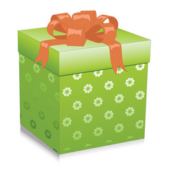 Green gift box isolated on white background vector