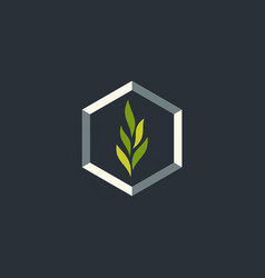 leaf plant ecology abstract logo vector image