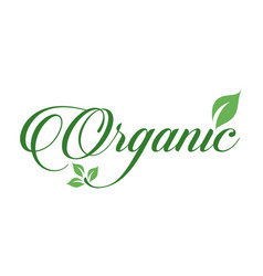 Organic food sign calligraphy with green leaf vector